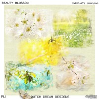 Beauty Blossom -  Overlays
