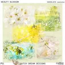 Beauty Blossom -  Overlays