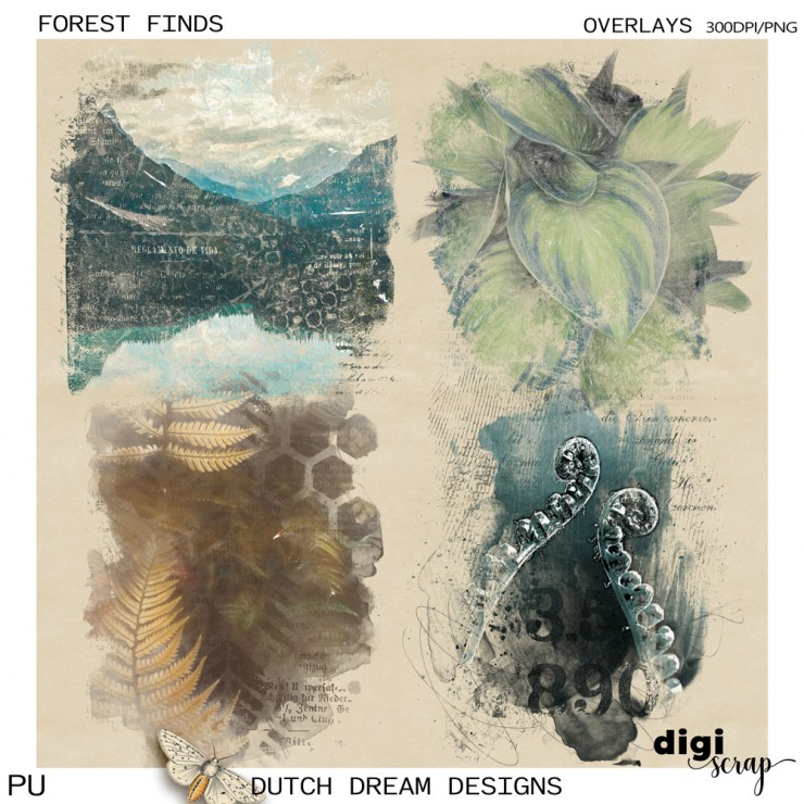 Forest Finds - Overlays