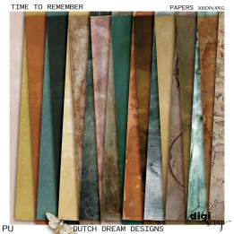 Time to Remember - Papers