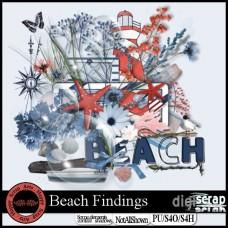 Beach Findings kit