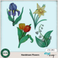 Handdrawn Flowers
