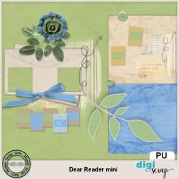 Dear Reader add on