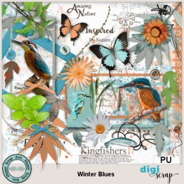Kingfisher elements