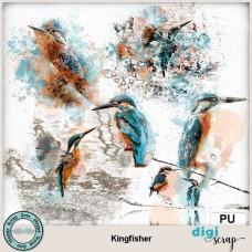 Kingfisher transfers