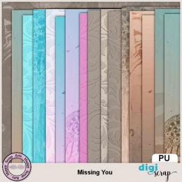 Missing You papers 2