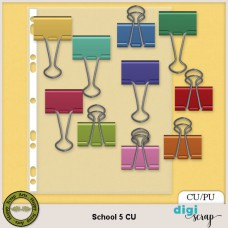 School 5 elements CU