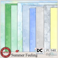 Summer Feeling papers 1