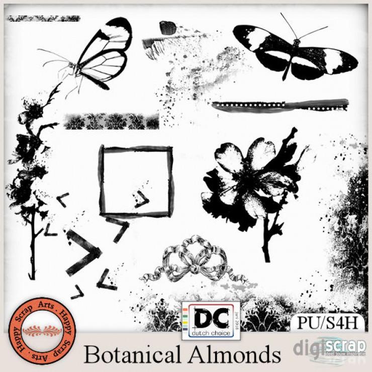 Botanical Almonds brushalike