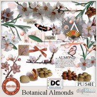 Botanical Almonds elements