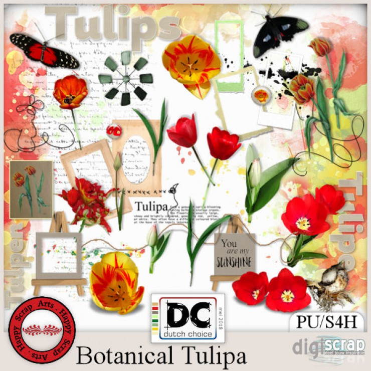 Botanical Tulipa elements