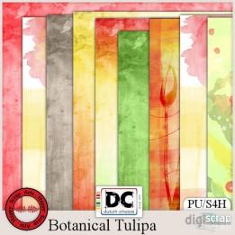 Botanical Tulipa Papers 2