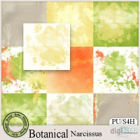 Botanical Narcissus papers add on