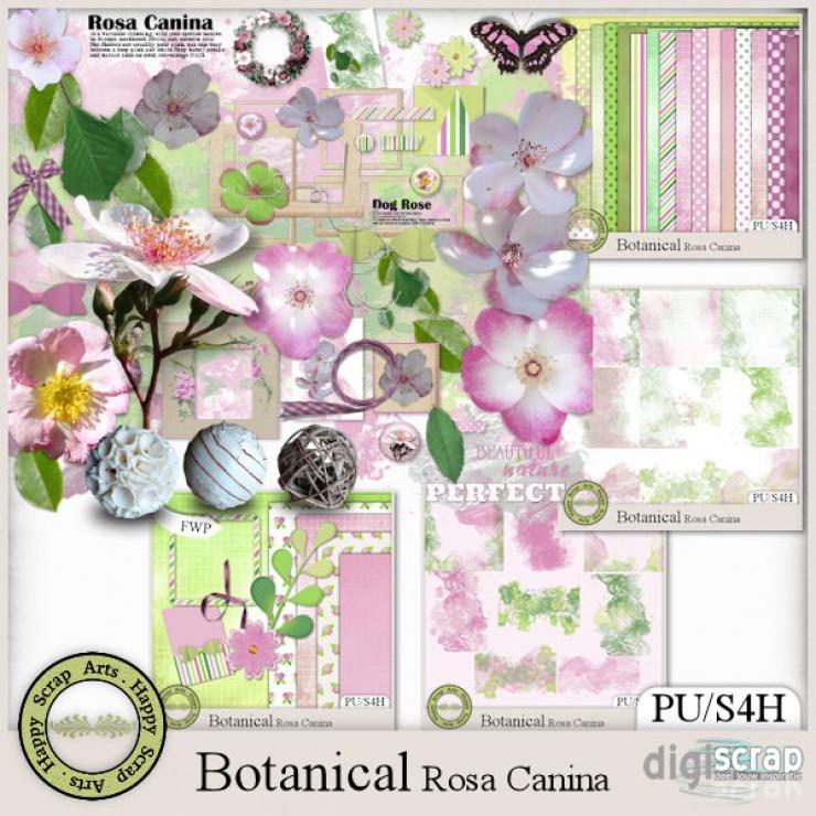 Botanical Rosa Canina bundle