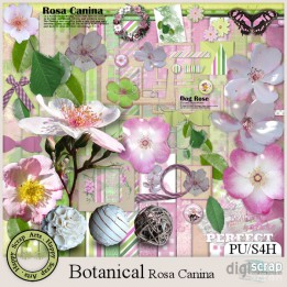 Botanical Rosa Canina kit