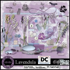 Lavendula elements