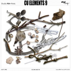 Elements 9 - CU|PU
