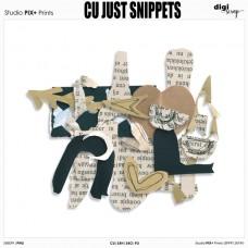 Just Snippets - CU|PU