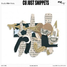 CU - Just Snippets
