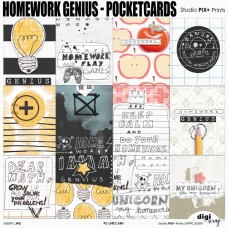 Homework Genius Pocketcards - PU