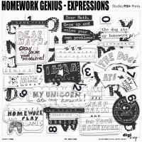 Homework Genius Expressions - PU