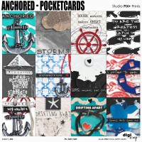Anchored Pocketcards - PU