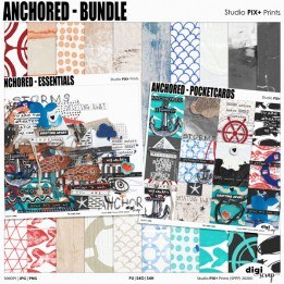 Anchored Collection - PU