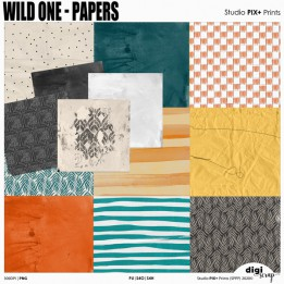 Wild One - Papers