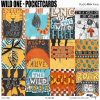 Wild One - Pocketcards