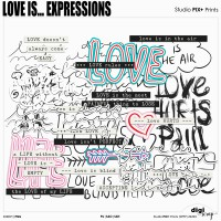 Love Is Expressions - PU