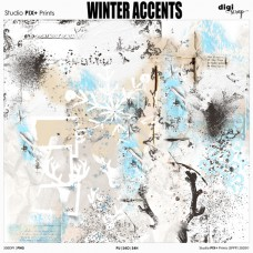 Winter Accents - brushalikes