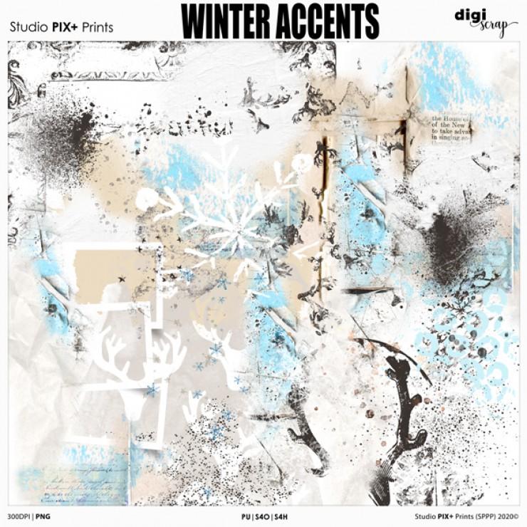 Winter Accents - brushalikes