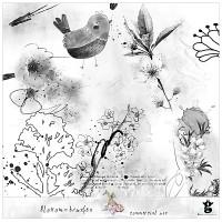 Blossom brushes - CU